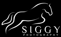 Siggy Photography